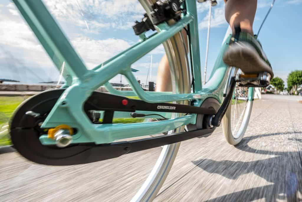 Bicicletta Normale