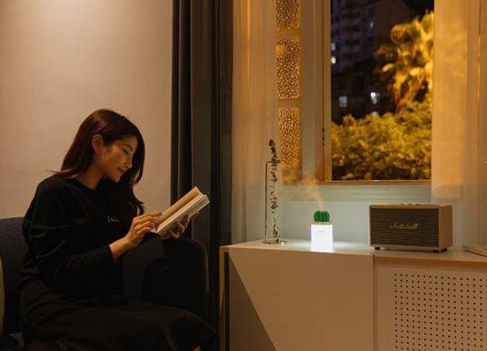Xiaomi Cactus Umidificatore: un oggetto di design bello e funzionale